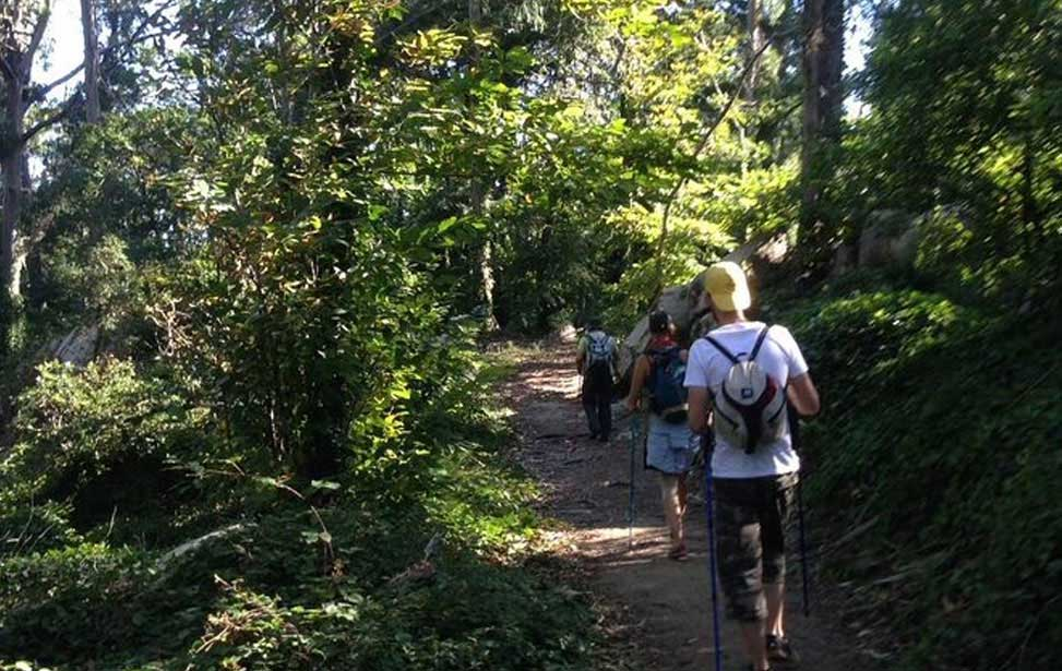 Hike in Sintra forest or Sintra coastline